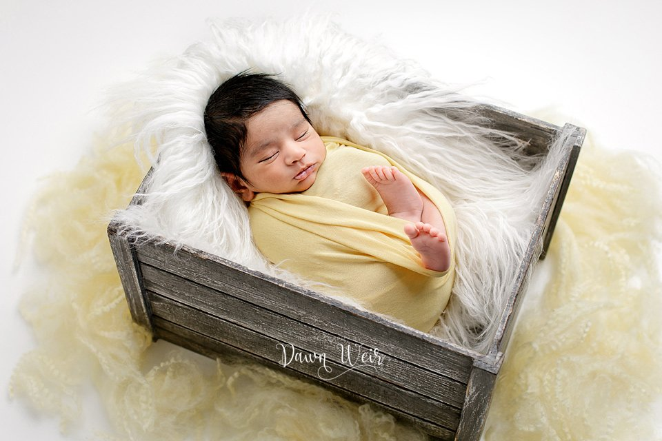 photo by photography by dawn weir newborn boy yellow wrap on white fur in grey wood bucket