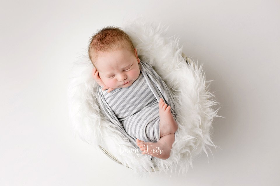 edmonton newborn photographer dawn weir newborn wrapped in grey and white striped wrap lying in a white fur bucket