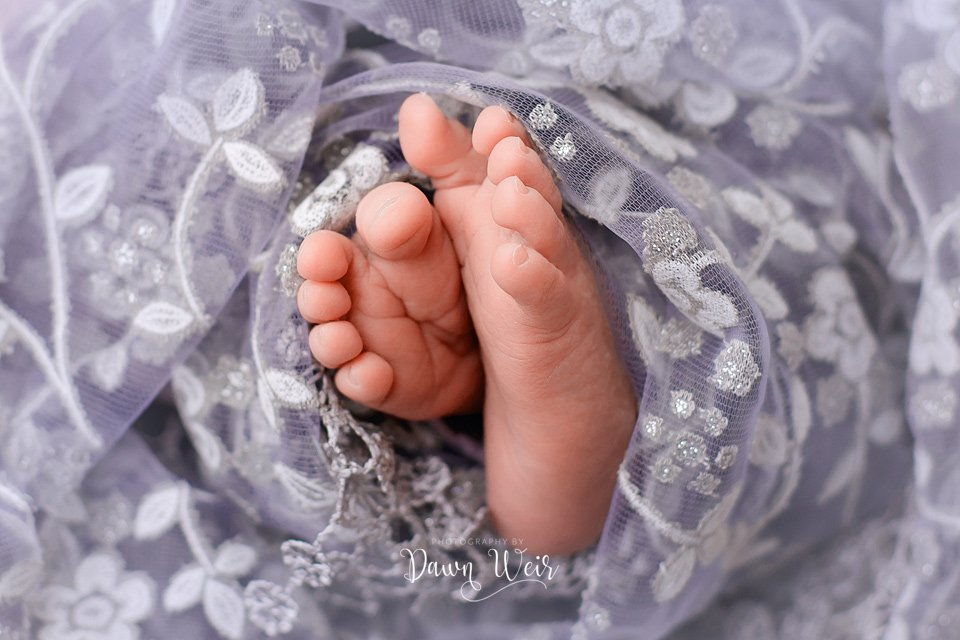 photo by dawn weir baby toes wrapped in purple lace