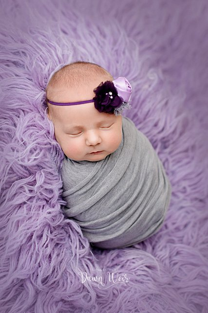 photo by dawn weir newborn girl lying on blanket bum up purple blanket