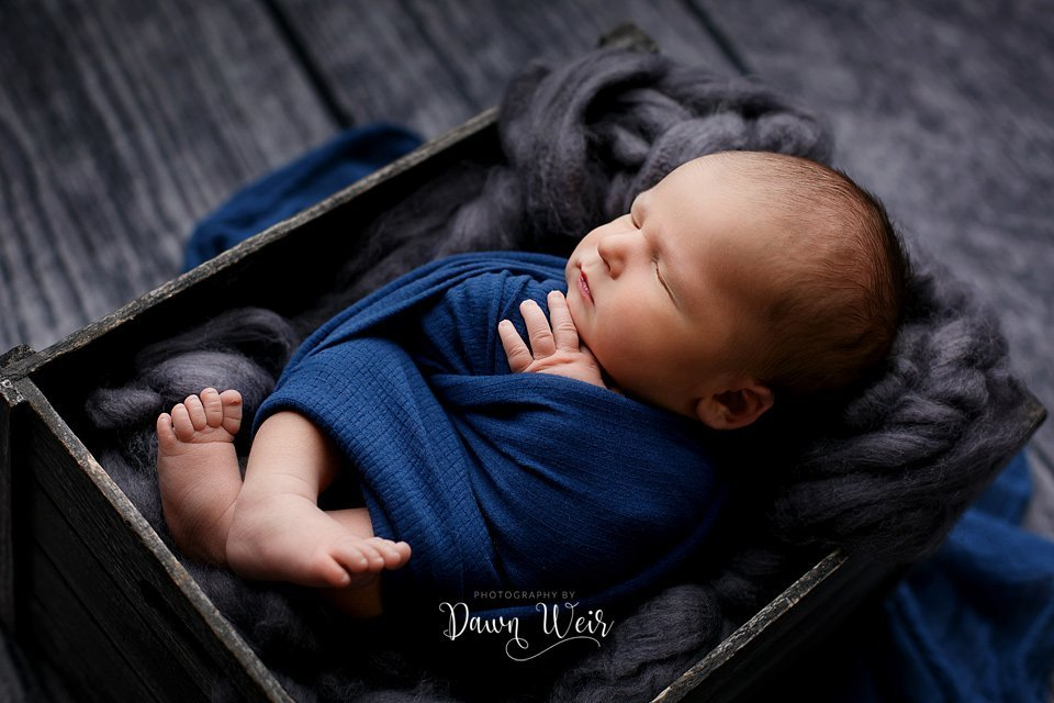 photo by dawn weir edmonton newborn boy blue wrap grey fluff in box