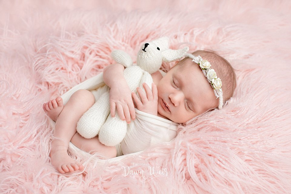 edmonton newborn photographer dawn weir baby girl lying pink fur with teddy bear