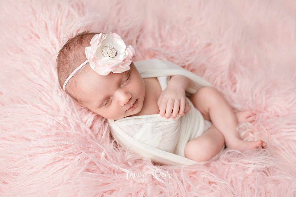 edmonton newborn photographer dawn weir baby girl lying pink fur