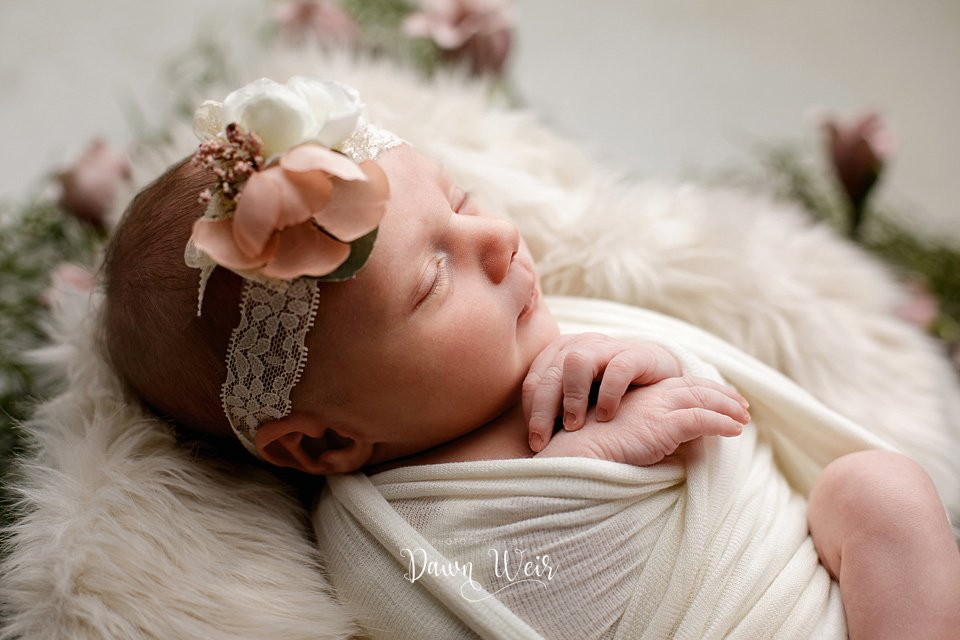 edmonton newborn photographer dawn weir dusty rose flowers baby girl wrapped in white boho