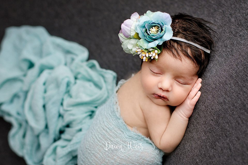 edmonton newborn twin girl photographer dawn weir