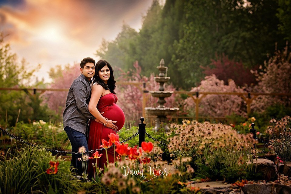 st albert botanic park maternity photo session pink choke cherry blossoms photographer dawn weir