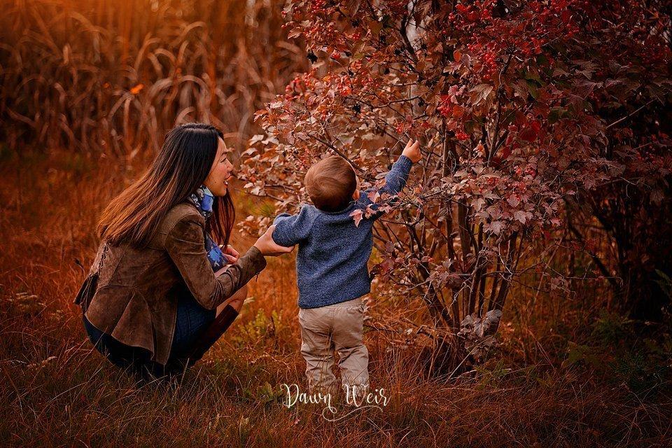 dawn weir fall family photography griesbach edmonton