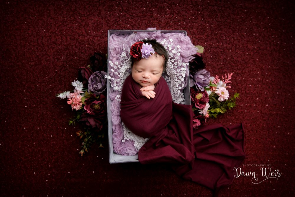 newborn photography with burgundy and pink flowers in a bucket