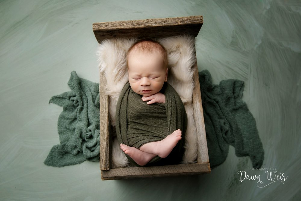 sage green newborn wrapped baby in a wooden bed with sage background