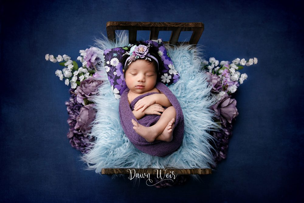 newborn baby girl lying on a small bed with purple and blue accents and flowers