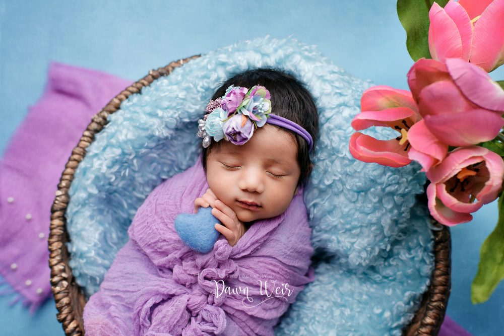 newborn girl with sky blue backdrop and pink tulips