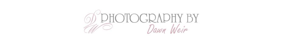 Photography By Dawn Weir logo